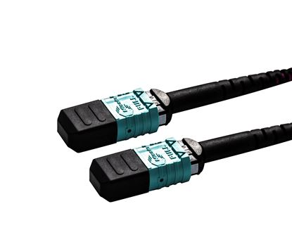 Picture of DYNAMIX 40M OM4 MPO ELITE Trunk Multimode Fibre Cable. POLARITY A