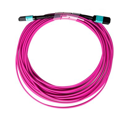 Picture of DYNAMIX 40M OM4 MPO ELITE Trunk Multimode Fibre Cable. POLARITY C