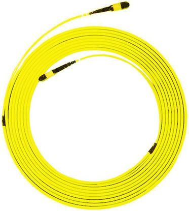 Picture of DYNAMIX 25M OS2 MPO ELITE Trunk Single-mode Fibre Cable. POLARITY C