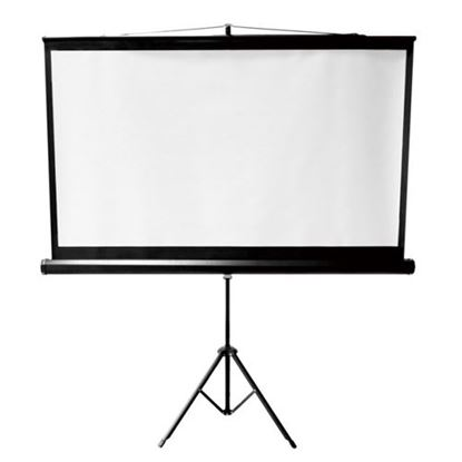 "Picture of BRATECK 112"" Projector Screen, with Tripod. 1:1 Aspect ratio."