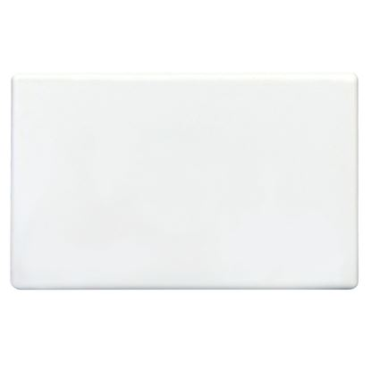 Picture of TRADESAVE Blank Plate. Accepts all Tradesave Mechanisms.