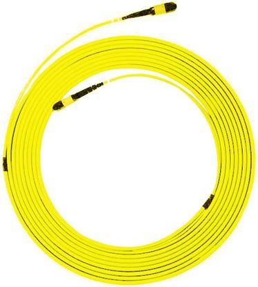 Picture of DYNAMIX 50M MPO UPC ELITE Trunk Single mode Fibre Cable. POLARITY A